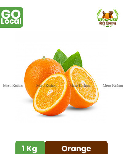 Orange Imported - सुन्तला