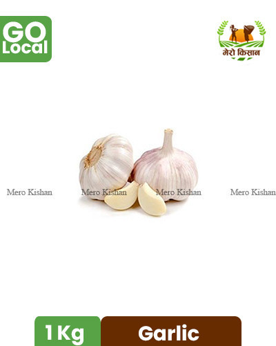 Local Garlic From Baglung